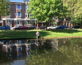 1 Rotterdam Bergsingel Aqua-Flora rollen